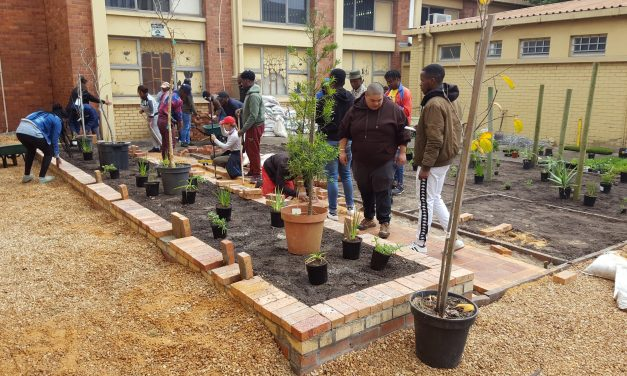 Students benefit from hands-on landscape installation at Corobrik-sponsored CPUT Construction Week