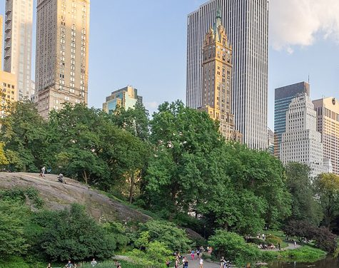 During Life under Lockdown, City Parks Become Sanctuaries