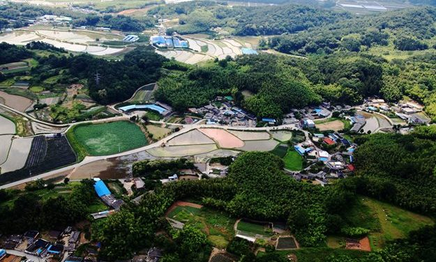 Korean bamboo cultivation system recognised as Globally Important Agricultural Heritage System