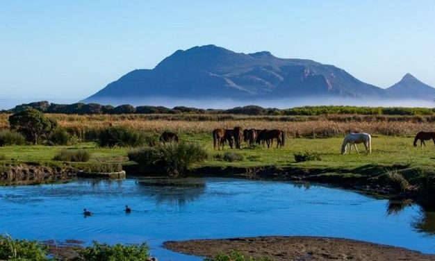 New master plan development to inject R1.56bn into Cape Town's Kommetjie