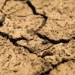 SA government revokes national disaster status of drought