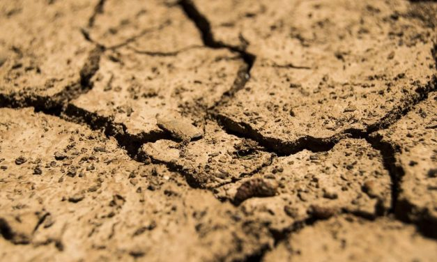 SA government revokes national disaster status of drought
