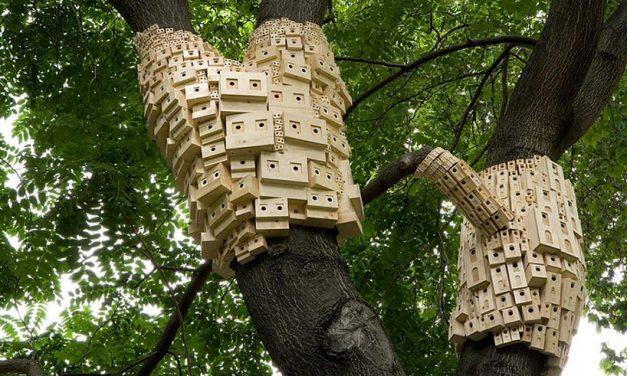 london fieldworks' dense metropolises of wooden birdhouses sprout from tree trunks