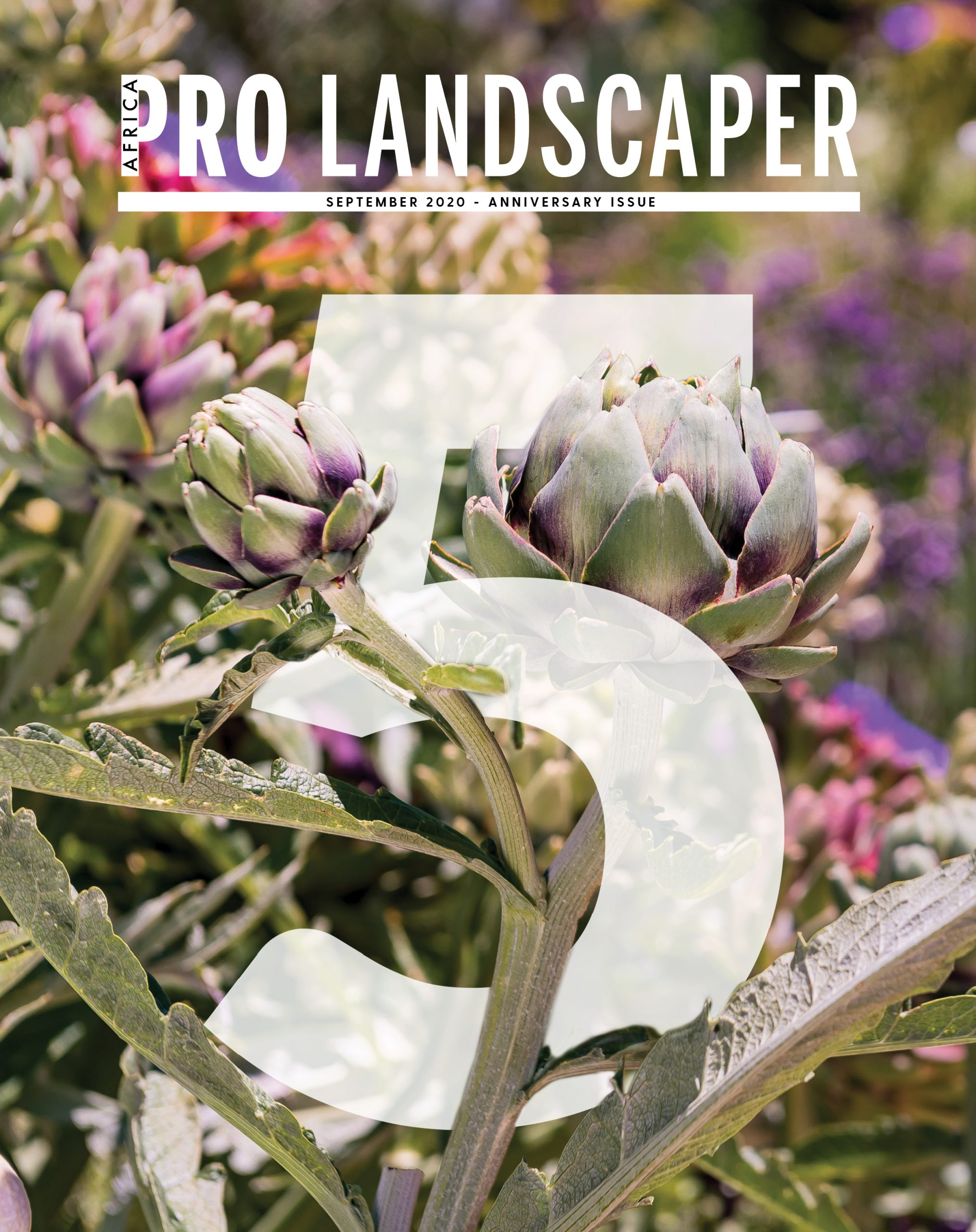 Pro Landscaper Africa September 5th Year Anniversary Issue