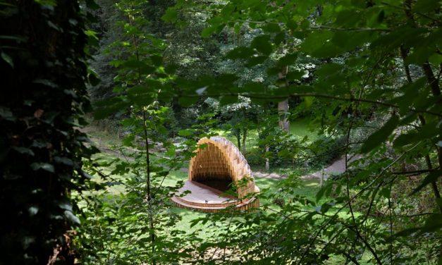 matthijs la roi architects builds a cedar-clad 'rain amplifier' in a belgian forest