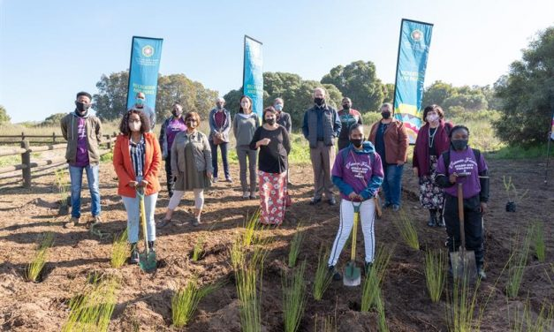 City adds 300 plants to Jack Muller Park to celebrate World Environment Day