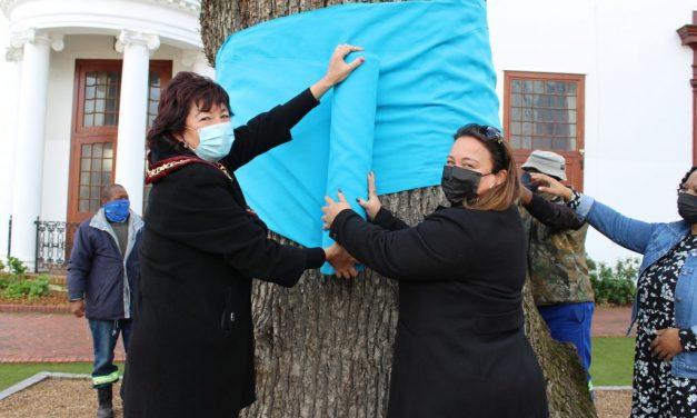 Planting Hope – Stellenbosch goes turquoise for Arbor Week