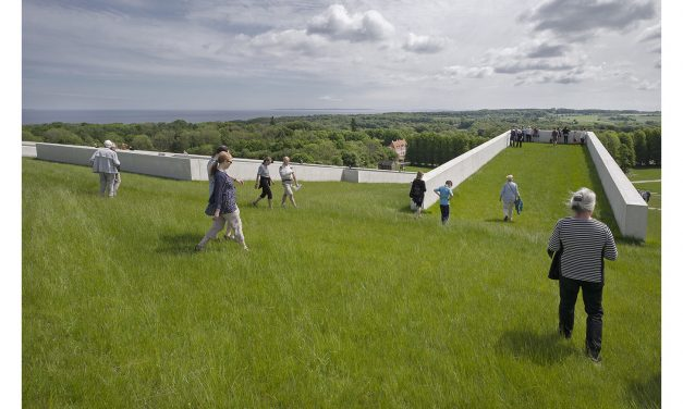 Can Green Roofs Make Our Cities Better?